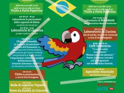FiF_Brasil